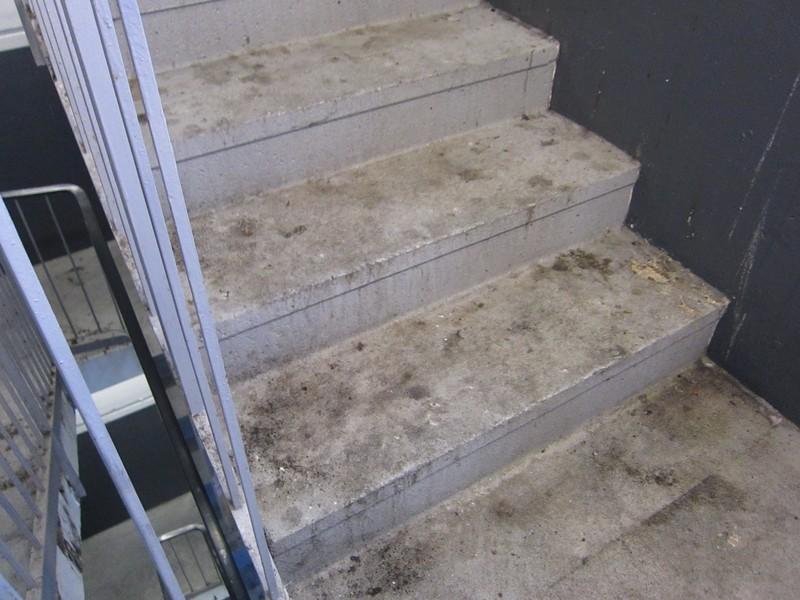 stark verschmutzte Stufen einer Betontreppe